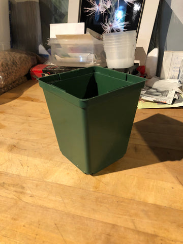 4.25 inch tall pot.  Square, Green