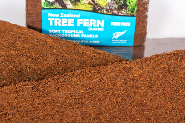 Medium Tree Fern Panel - twin pack