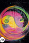 UV Glow Painting Multicolor Yin Yang
