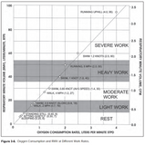 Oxygen Consumption and Work Rates