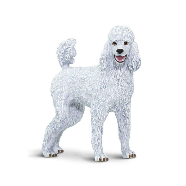 Safari LTD | Best in Show ~ Poodle