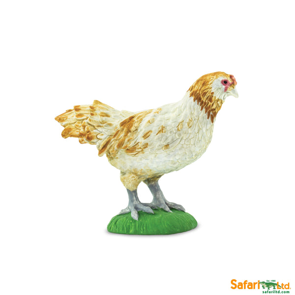 Safari LTD | Safari Farm ~ AMERAUCANA CHICKEN