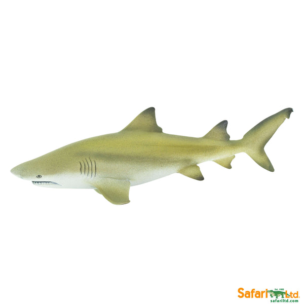 Safari LTD | Wild Safari Sealife ~ Lemon Shark