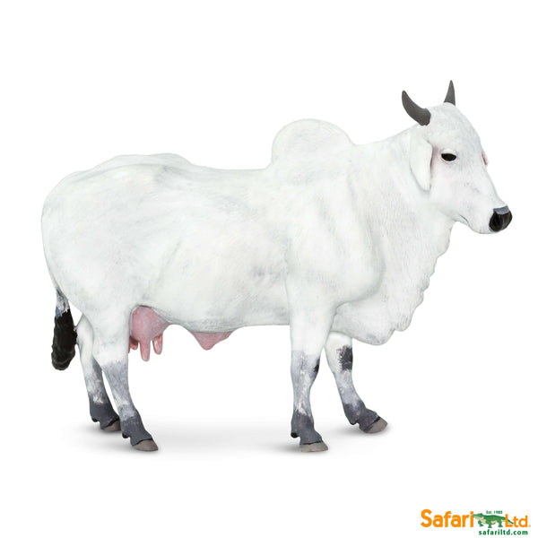 Safari LTD | Safari Farm ~ ONGOLE COW