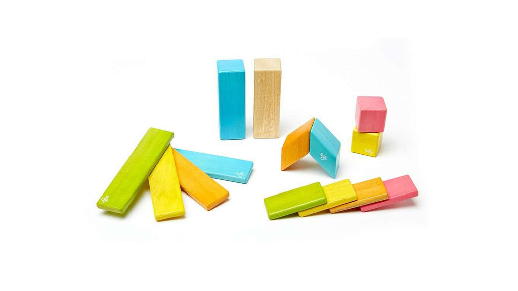 Tegu | Tints | 14 Piece Set