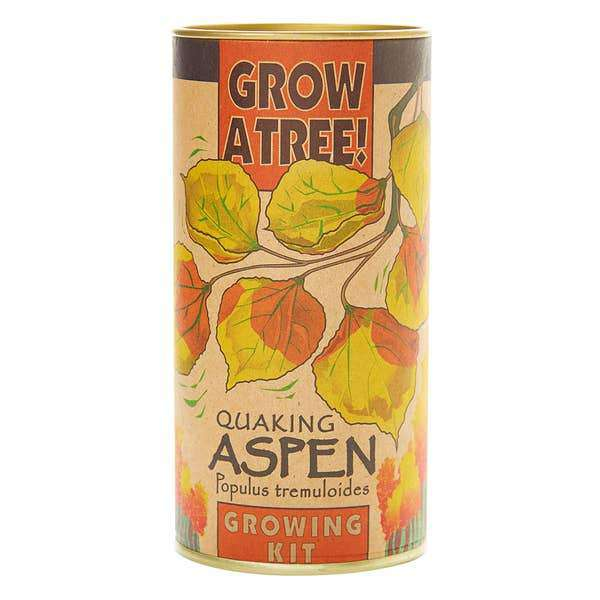 The Jonsteen Company - Quaking Aspen | Seed Grow Kit