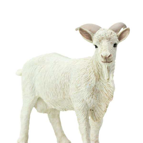 Safari LTD | Safari Farm ~ BILLY GOAT