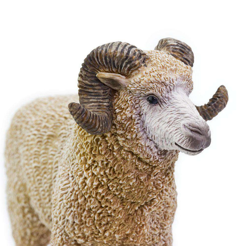 Safari LTD | Safari Farm ~ RAM