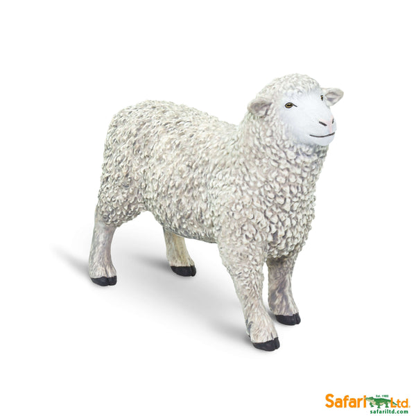 Safari LTD | Safari Farm ~ SHEEP