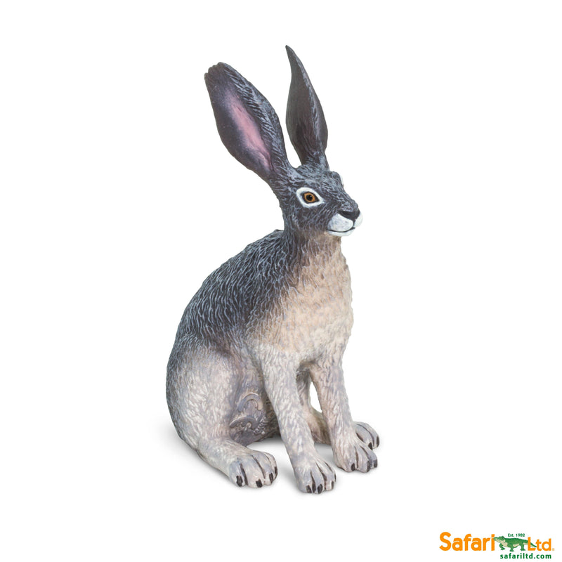 Safari LTD | Wild Safari North American Wildlife ~ AMERICAN DESERT HARE