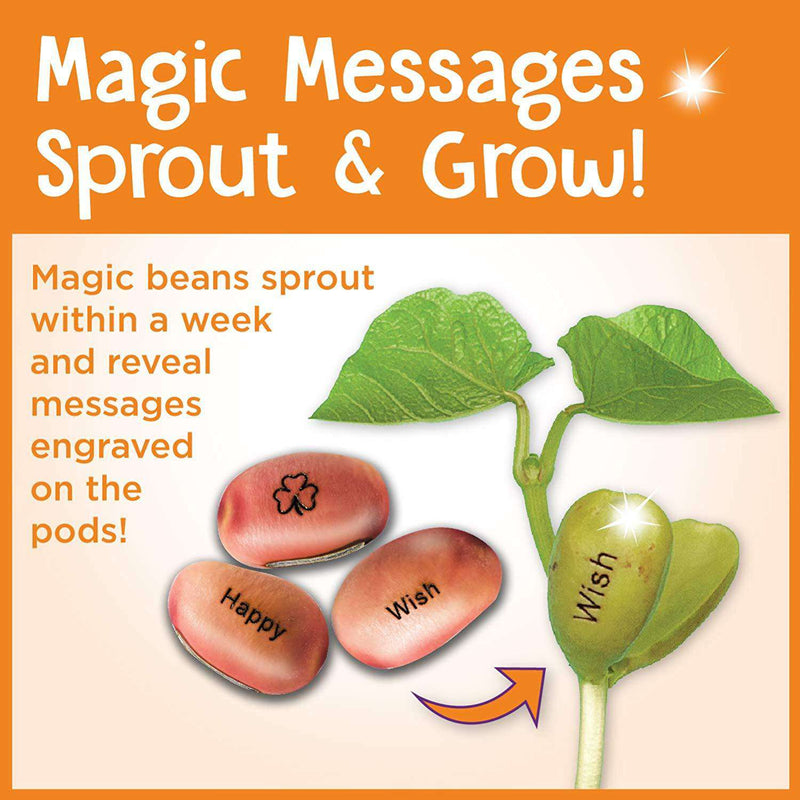 Creativity For Kids | Magic Bean Garden