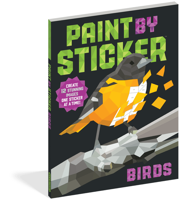 Paint by Sticker ~ Birds