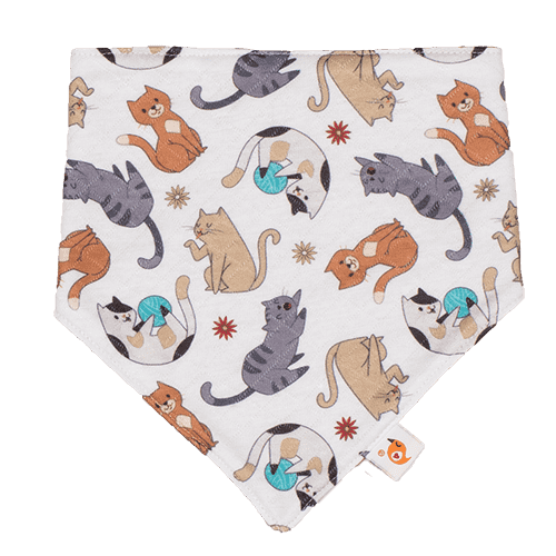Smart Bottoms | Bandana Bib ~ Felix