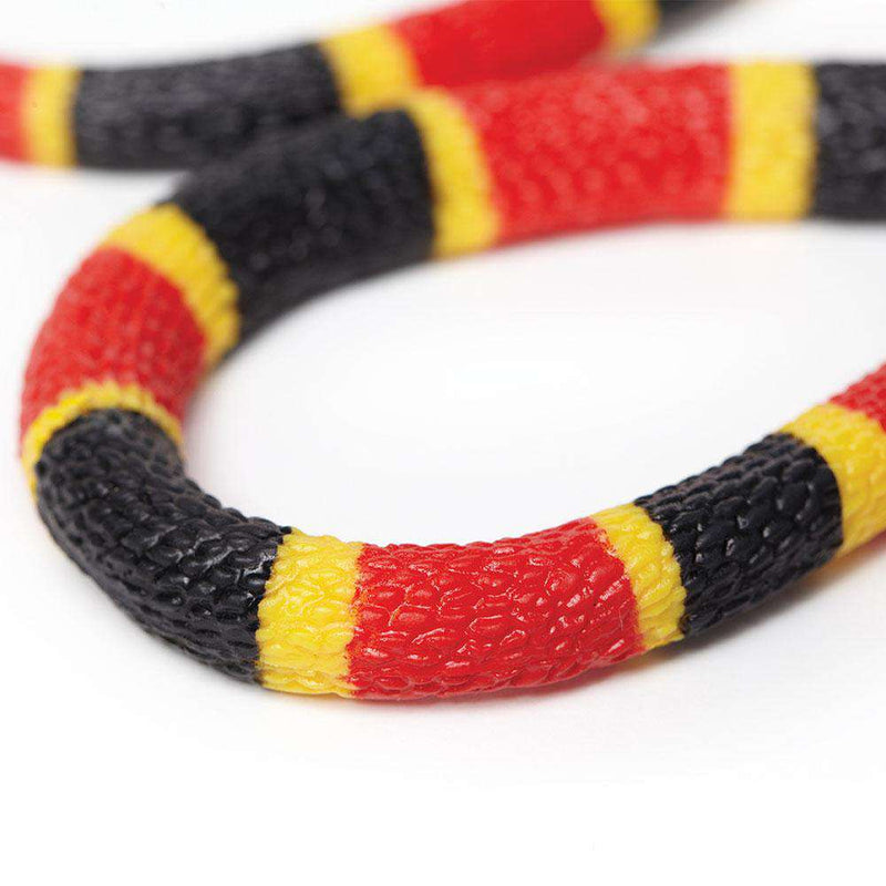 Safari LTD | Incredible Creatures ~ CORAL SNAKE BABY
