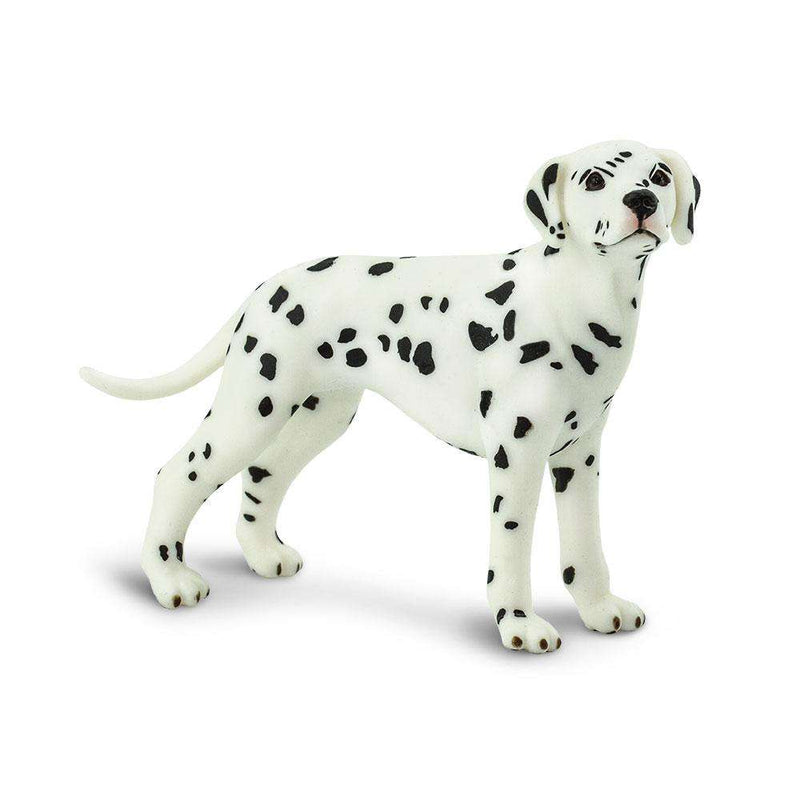 Safari LTD | Best in Show ~ DALMATIAN