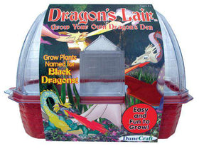 Dune Craft ~ Greenhouse Dragon's Lair