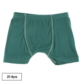 Kickee Pants Boy's Boxer Brief | Ivy with Pistachio