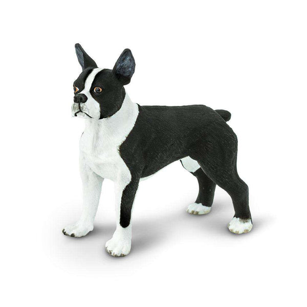 Safari LTD | Best in Show ~ Boston Terrier