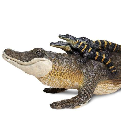 Safari LTD | Incredible Creatures ~ Alligator with Babies