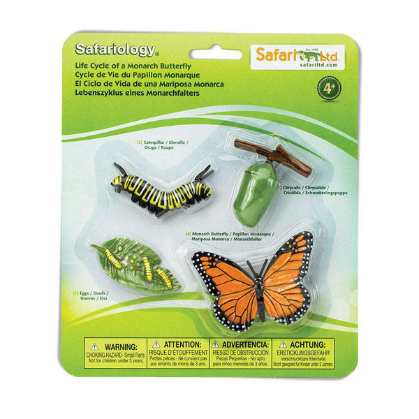 Safari LTD | Safariology ~ LIFE CYCLE OF A MONARCH BUTTERFLY