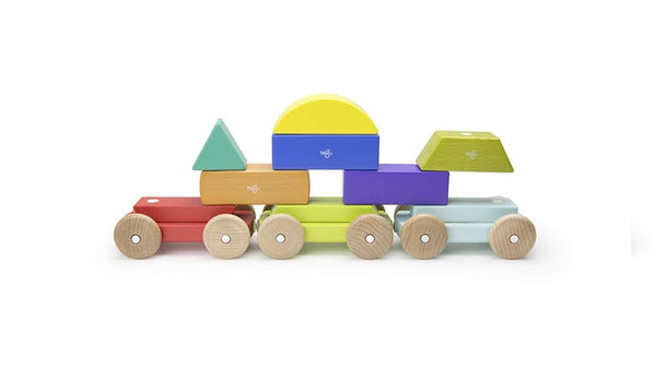 Tegu ~ Magnetic Shape Train - Rainbow