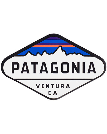 patagonia Men's Baggies™ Shorts 5