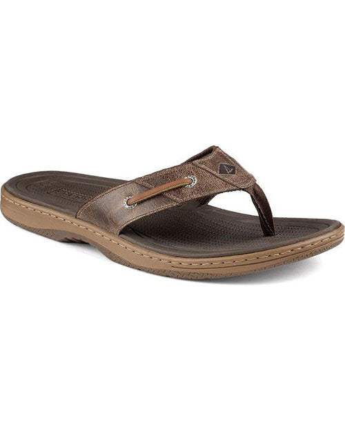 sperry baitfish sandal