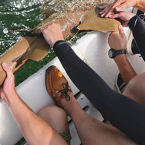 Authentic Original Boat Shoes Sperry in the Forest