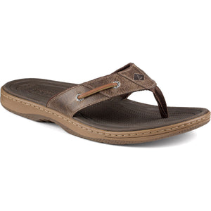 Men's Baitfish Thong Sandal in Brown by Sperry