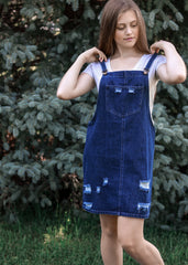 Overall Denim Skirt