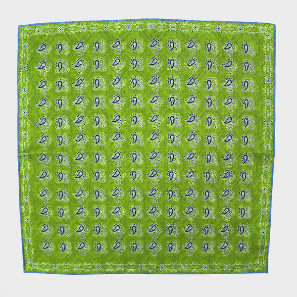 Lime Paisley & Floret Reversible Panama Silk Pocket Square