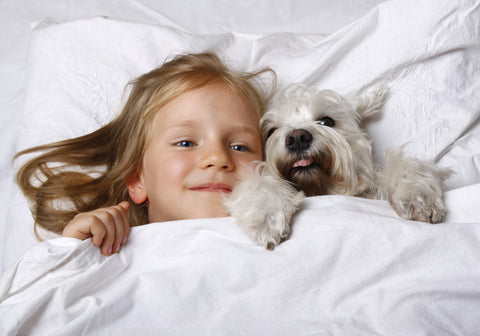 cute-puppy-dog-child-in-bed-king-size-mattress-sale-bedding-mart-Conway-AR