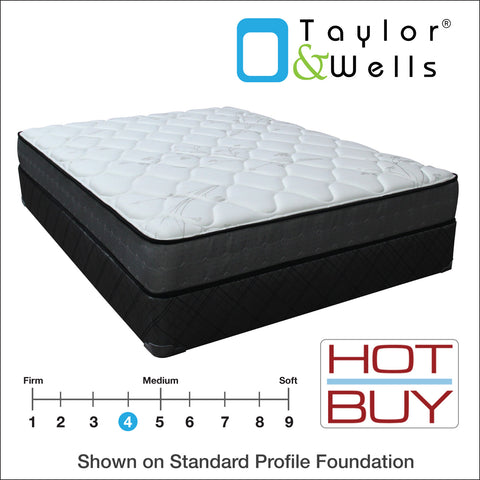 "Taylor & Wells® 9"" Wallace Plush Mattress"
