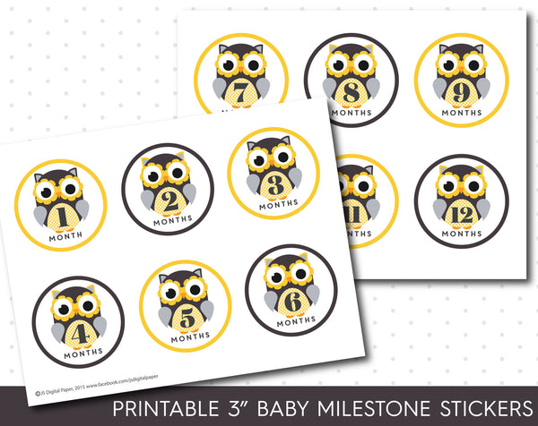 Owl baby milestone stickers in yellow with babies first 12 months, MS-34