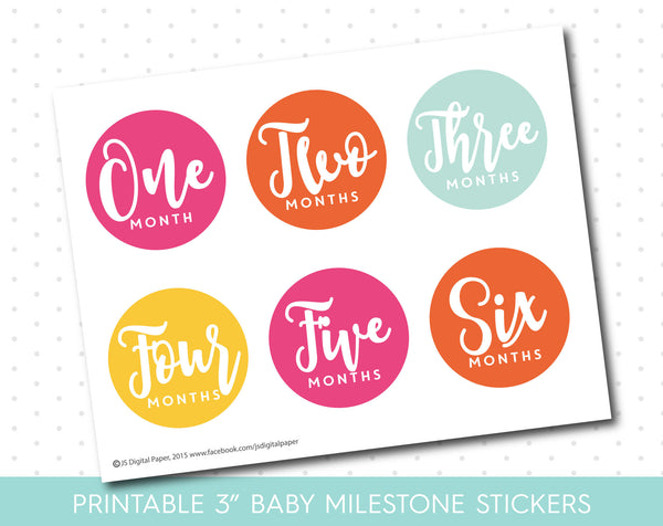 Hot Pink, Orange and Mint monthly milestone stickers in black and white text with babies first 12 months, MS-40