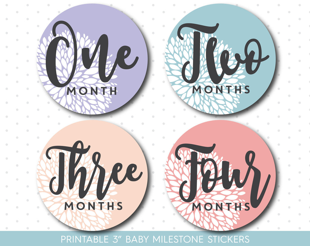 Purple and Pink Floral baby monthly milestone stickers with babies first 12 months, MS-45