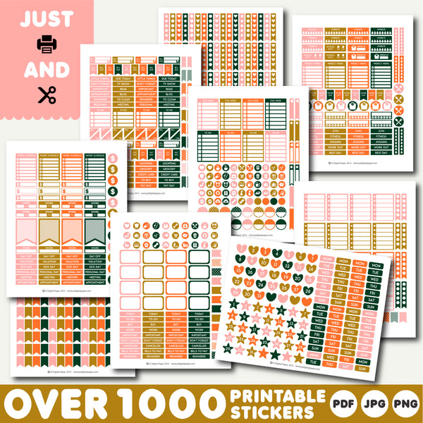 Orange and pink printable planner stickers, STI-1260