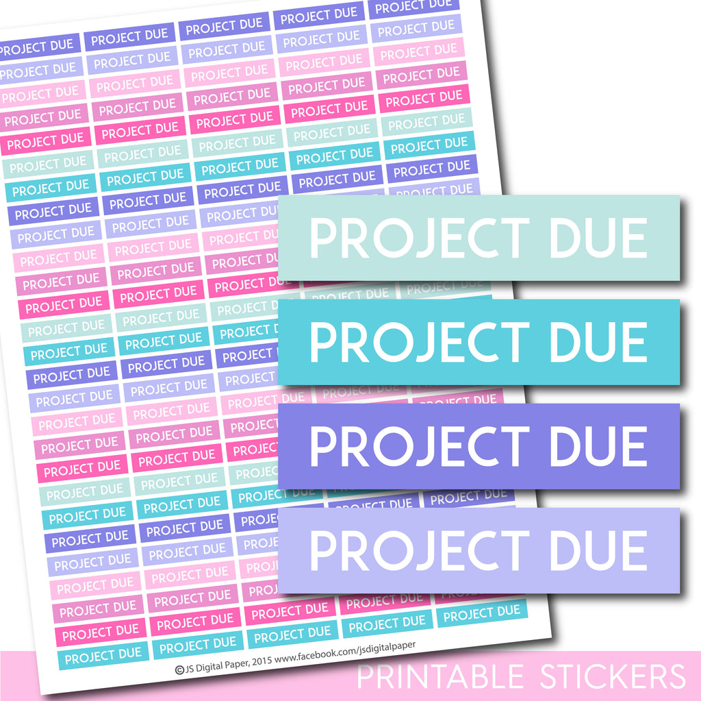 Project due Erin Condren planner stickers, Project due Happy Planner stickers, Project due ECLP stickers, STI-1290