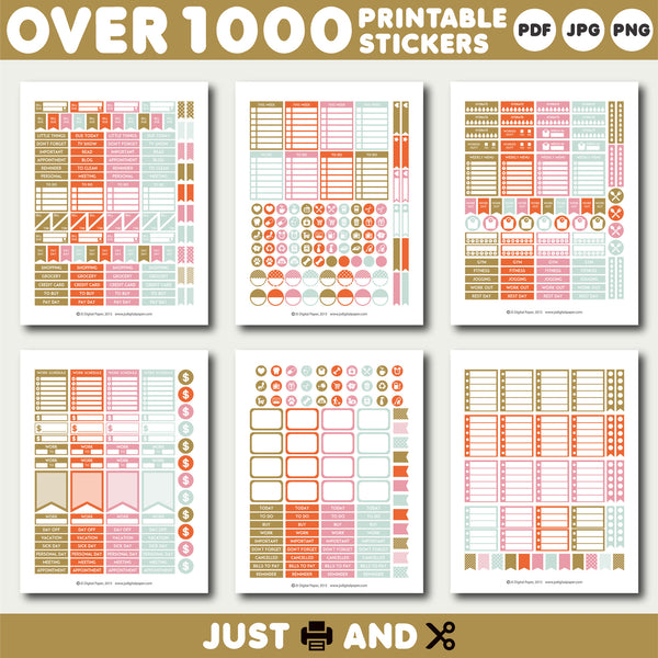 Orange and pink Printable stickers, Monthly planner stickers, STI-922