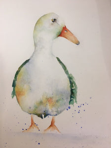 Watercolour print of colourful duck looking right with water splashes