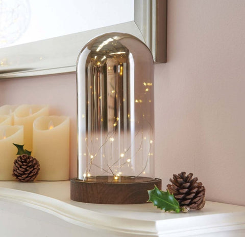 Ombre Glass Dome Bell Jar With Wire Lights