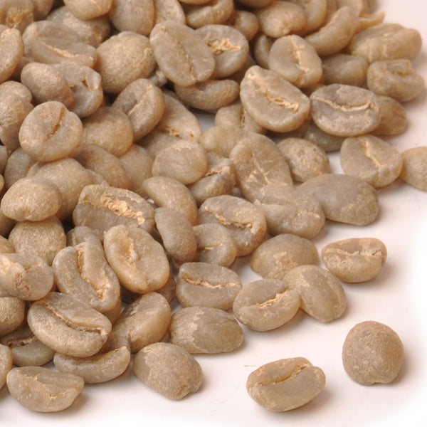Kenya Blue Mountain AA - Raw Green Coffee Beans