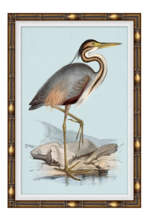 Heron Blues 1 Art