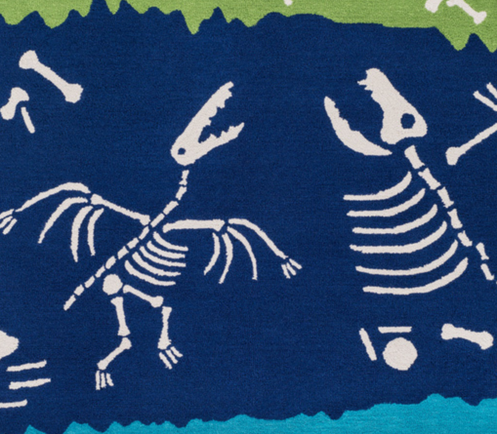 Cool Fossils Rug
