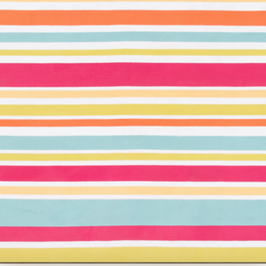 Preppy Stripe  Indoor/Outdoor Rug - Revibe Designs