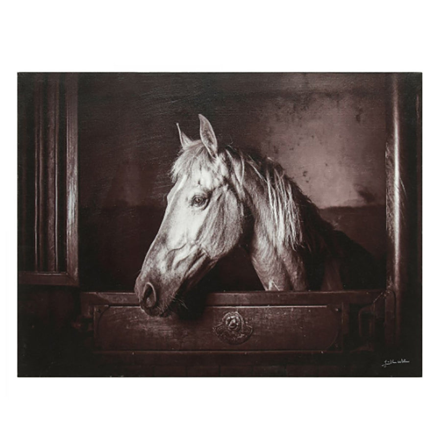Thoroughbred Palomino Wall Art - Revibe Designs