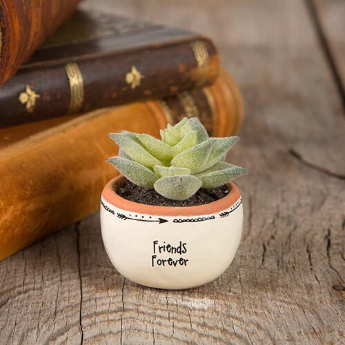 Friends Forever Succulent Keepsake