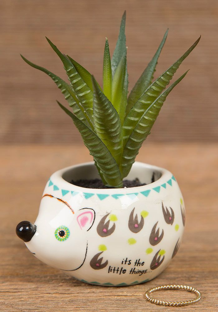 It's The Little Things Hedgehog Succulent Keepsake