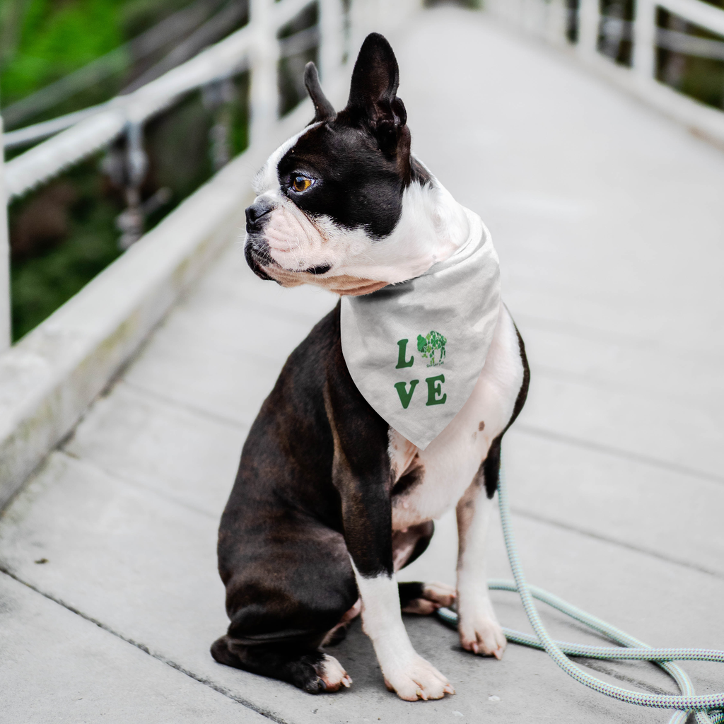 Lucky in BuffaLOVE Rock Salt Life Pet Bandana-FREE SHIPPING