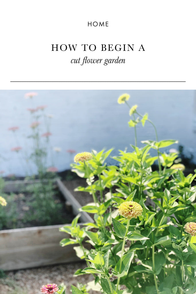 How to Begin a Cut Flower Garden